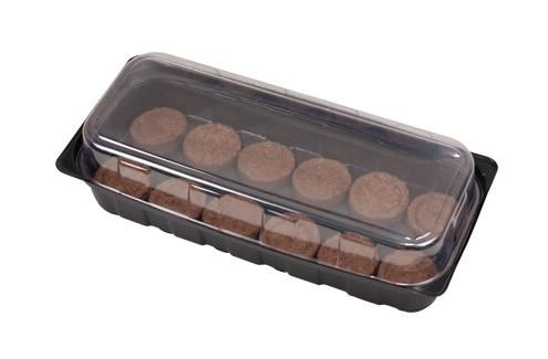 Eco-Coir Mini-Gewächshaus mit 12 Kokosfaser-Coins